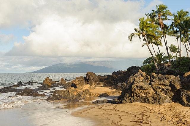 마우이 해변에 돌출해 있는 화산암
