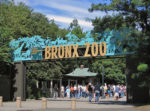 브롱스 동물원(Bronx Zoo)