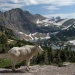 글라시아 국립공원 (Glacier National Park)