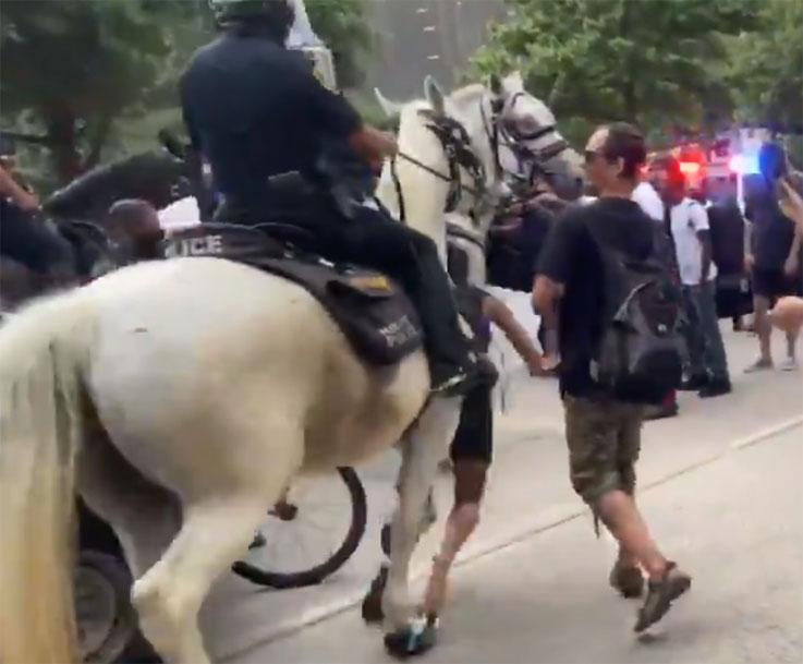 휴스턴 다운타운에서 기마 경찰관 에 의해 짓 밟힌 한 여성 시위대