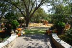 댈러스 수목원 & 식물원(Dallas Arboretum & Botanical Gardens)
