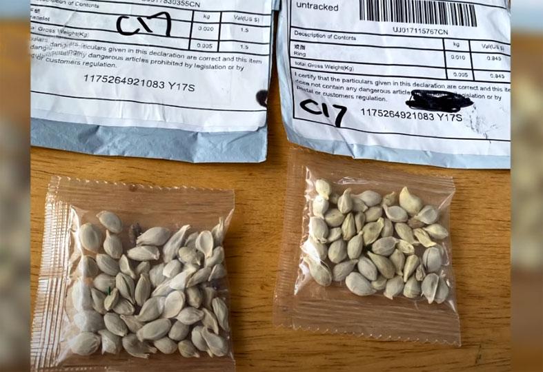미국 농무부, 우편으로 전달되는 미스테리 씨앗 경고