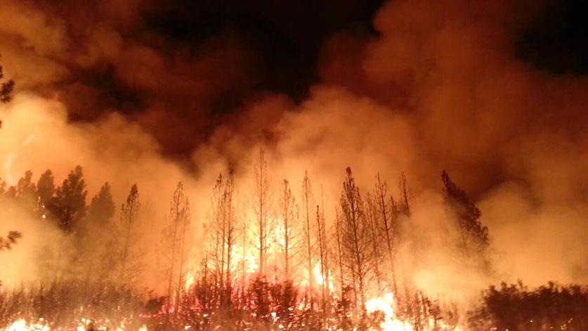 트럼프, 축구장 10만개의 면적을 태우고 있는 캘리포니아 산불에 재난 선포