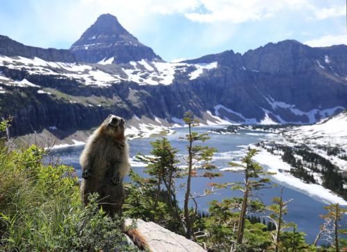 Glacier National Park (U.S.)