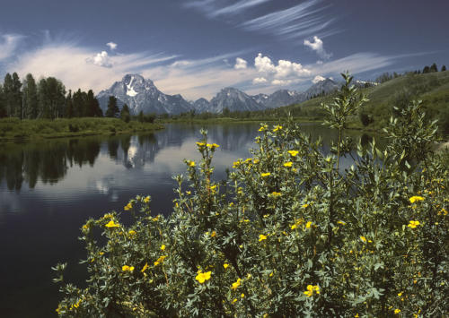 Oxbow Bend outlook in the Grand Teton National Park