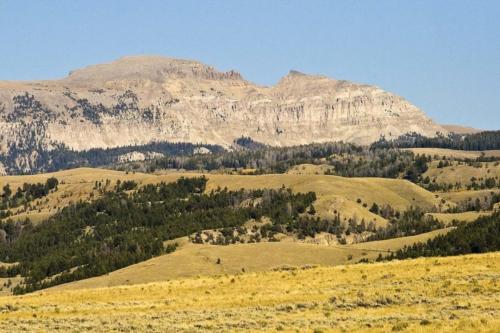 Sheep Mountain Jackson WY1
