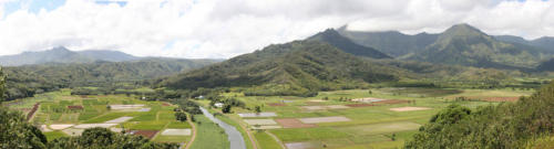 Hanalei Valley from the Hanalei Lookout in Hanalei, Hawaii