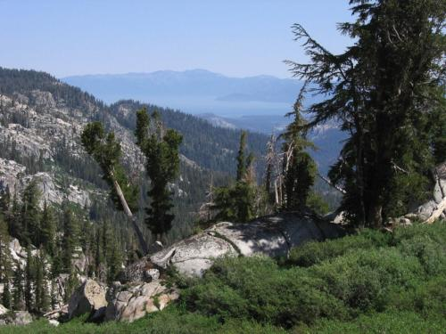 Tahoe Rim Trail SL